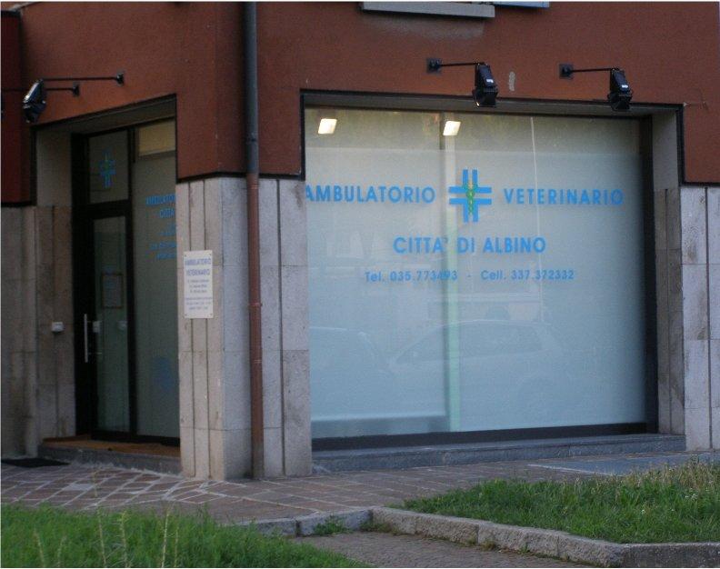 Ambulatorio veterinario città di Albino