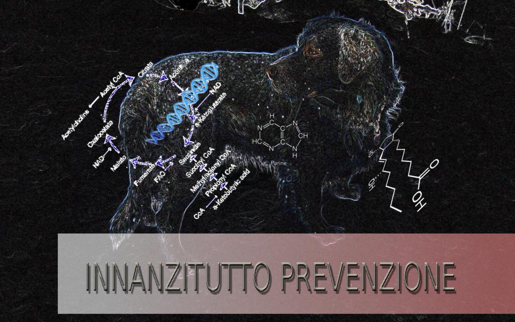 cane_colzate