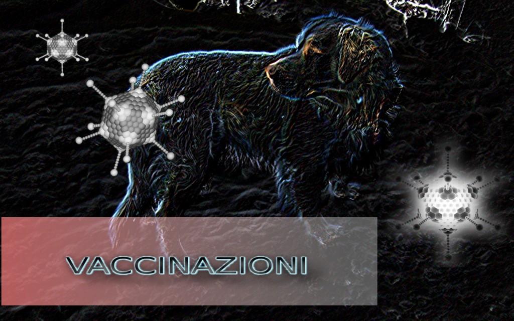cane_vaccino